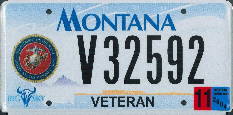 License Plate 1007