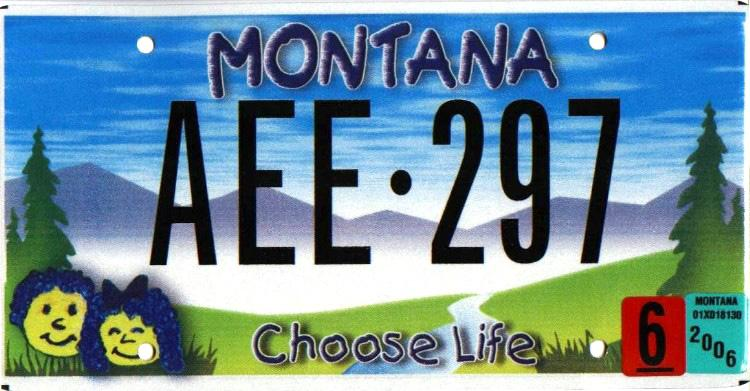 License Plate 9843