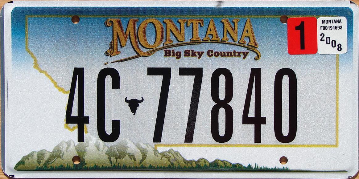 License Plate 10105