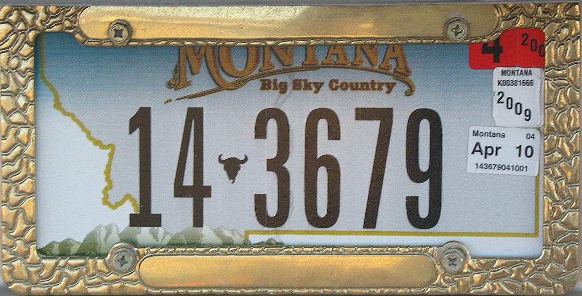 License Plate 9313