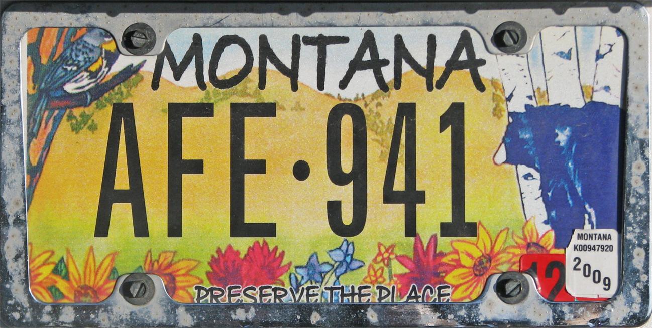 License Plate 9753