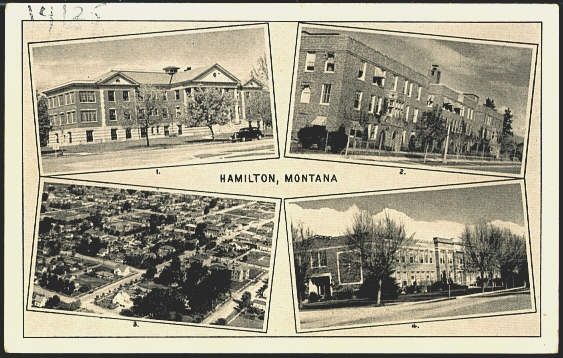 Hamilton Montana